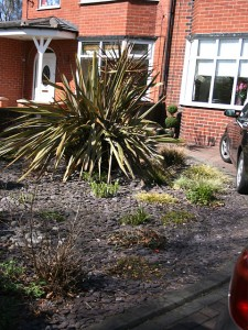 Low maintanance landscaped front garden