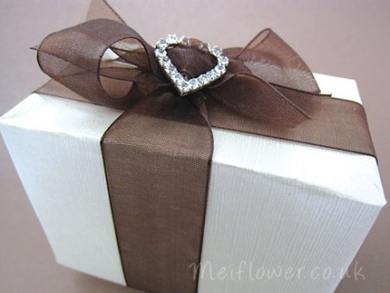 Diamante buckle with organza ribbon